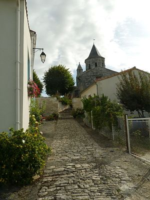 Arces - A Village Lane