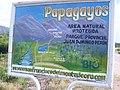 Area protegida PAPAGAYOS.JPG