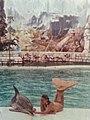Atlantis Marine Park.jpg