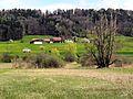 Auslikon - Strandweg 2012-04-19 13-51-28 (P7000).JPG