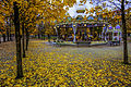 Autumn Tuileries Garden, Paris 13 November 2012.jpg