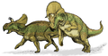 Avaceratops dinosaur.png