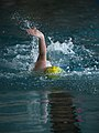 Backstroke (33841227).jpeg