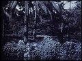 File:Barcelone parc au crépuscule (1904).webm