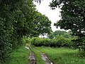 Barrett's Mill Lane - geograph.org.uk - 506870.jpg