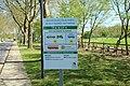 Base régionale de loisirs de Saint-Quentin-en-Yvelines à Trappes le 4 mai 2016 - 04.jpg