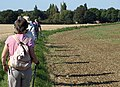 Bedfordshire Walking Festival - geograph.org.uk - 1490578.jpg