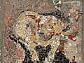 Belgrade zoo mosaic0059.JPG