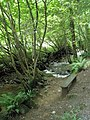 Bench beside the River Heddon near Harry's Orchard - geograph.org.uk - 917653.jpg