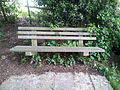 Bench on footpath in Wadhurst.jpg