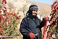 Berberis 13960722 04.jpg