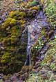 Bergtocht van Vens naar Bettex in Valle d'Aosta (Italië). Watervalletje naast het bergpad 04.jpg