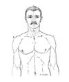 Bertillon - Identification anthropométrique (1893) 360 n&b.png