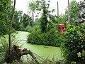 Beware alligators^ - geograph.org.uk - 828432.jpg