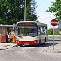 Biala-Podlaska-Jelcz-090518.jpg