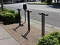 Bicycle racks and parking meter, Nashville.JPG