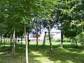 Birchwood Lodge Farm - geograph.org.uk - 33046.jpg