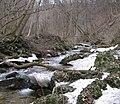 Bistriški vintgar - panoramio.jpg