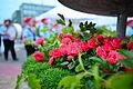 Blomsterfestival15 2.JPG