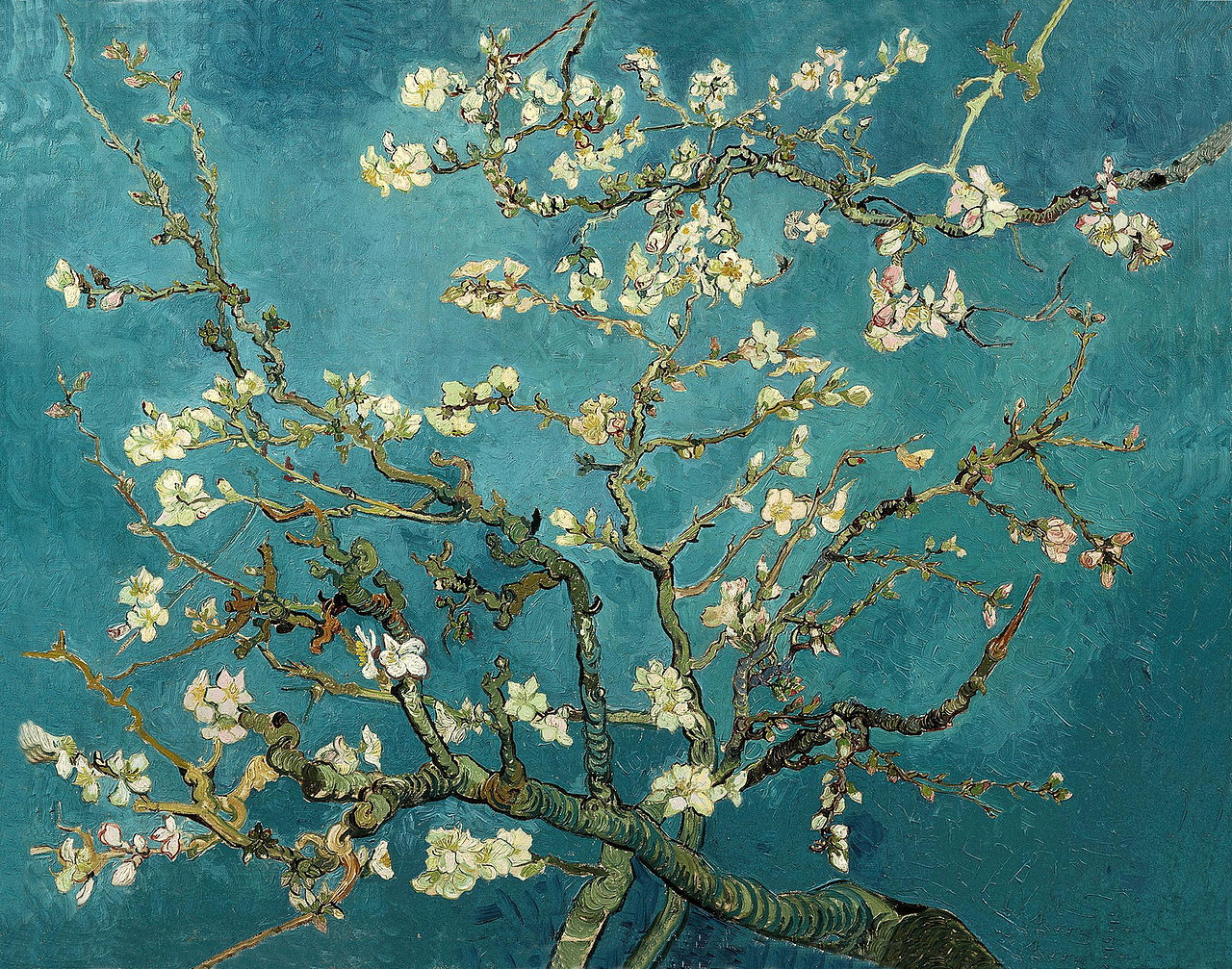 Blossoming Almond Tree Vincent Van Gogh 1890