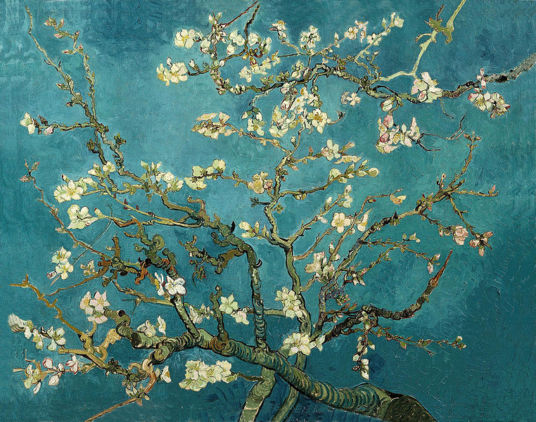 File:Blossoming Almond Tree.jpg