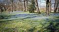 Blue Spring (33660061975).jpg