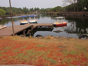 Boating at sarovaram bio park,kozhikode