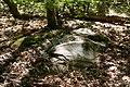 Bois de la Croix Boissée Souzy-la-Briche n4.jpg
