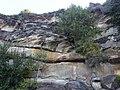 Bondi Beach NSW 2026, Australia - panoramio (4).jpg