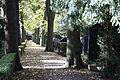 Bonn-Castell Jüdischer Friedhof 2.JPG
