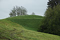 Boshasel-1387.jpg