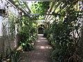 Botanische tuinen Utrecht 61.jpg