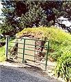 Boterstraat f - 137808 - onroerenderfgoed.jpg