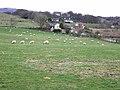 Bramptonfell Gates - geograph.org.uk - 1237915.jpg
