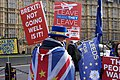 Brexit Protestors London.jpg