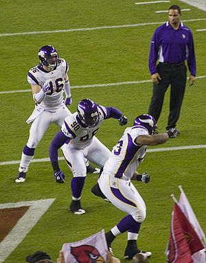 2009 Minnesota Vikings season - Brian Robison, Letroy Guion and Jimmy Kennedy in week 13