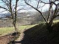 Bridleway across Troed-rhiw-felen - geograph.org.uk - 695794.jpg
