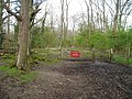Bridleway entering woods of Angmering Park Estate - geograph.org.uk - 761841.jpg