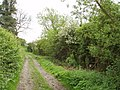 Bridleway with hedges - geograph.org.uk - 438721.jpg