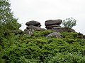 Brimham Rocks from Flickr M 09.jpg