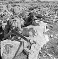 British Forces in the Middle East, 1945-1947 E31812.jpg