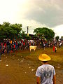 Bullfighting-in-Guararé-Panama.jpg
