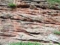 Bunter Sandstone, Hopstone, Shropshire - geograph.org.uk - 419141.jpg