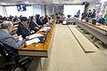 CAE - Comissão de Assuntos Econômicos (23080888782).jpg