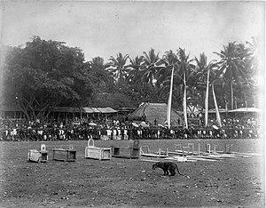 Rampokan - Image: COLLECTIE TROPENMUSEUM Een tijgergevecht T Mnr 60005106