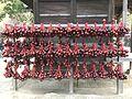 Calabashes in Dazaifu Temman Shrine.jpg