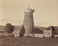Callington Mill circa 1900.jpg