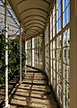 Camellia House, Wollaton Hall, Nottingham (6).jpg