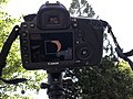 Camera partial solar eclipse.jpg