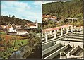 Campelo e Viveiro de Trutas (3507826904).jpg